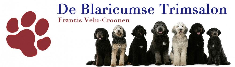 De Blaricumse Trimsalon